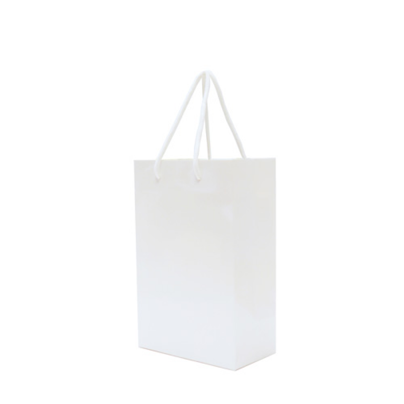 Image of Walton A5 Matt Laminated Paper Carrier Bag
