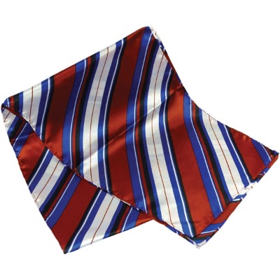 Image of Printed Polyester Scarf (Long)