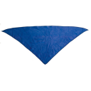 Image of Neckerchief Plus